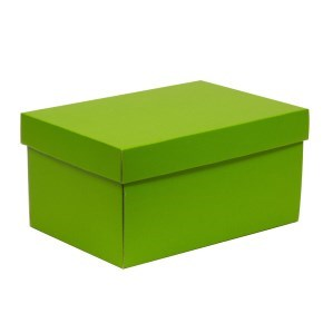 Dárková krabice s víkem 300x200x150/40 mm, zelená
