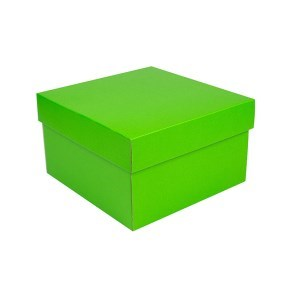 Úložná krabice s víkem 250x250x150 mm, zelená matná