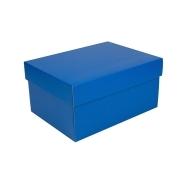 f692e984a Úložná krabice s víkem 300x215x150 mm, modrá matná