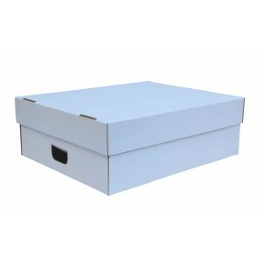 Úložná krabice s víkem 550x440x190 mm, BÍLÁ