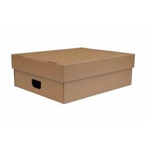Úložná krabice s víkem 550x440x190 mm