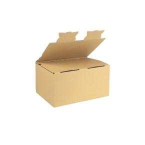 Zásilková krabice EKOBOX 3VVL 282x191x140 mm, hnědá